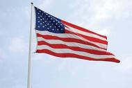 U. S. Flags