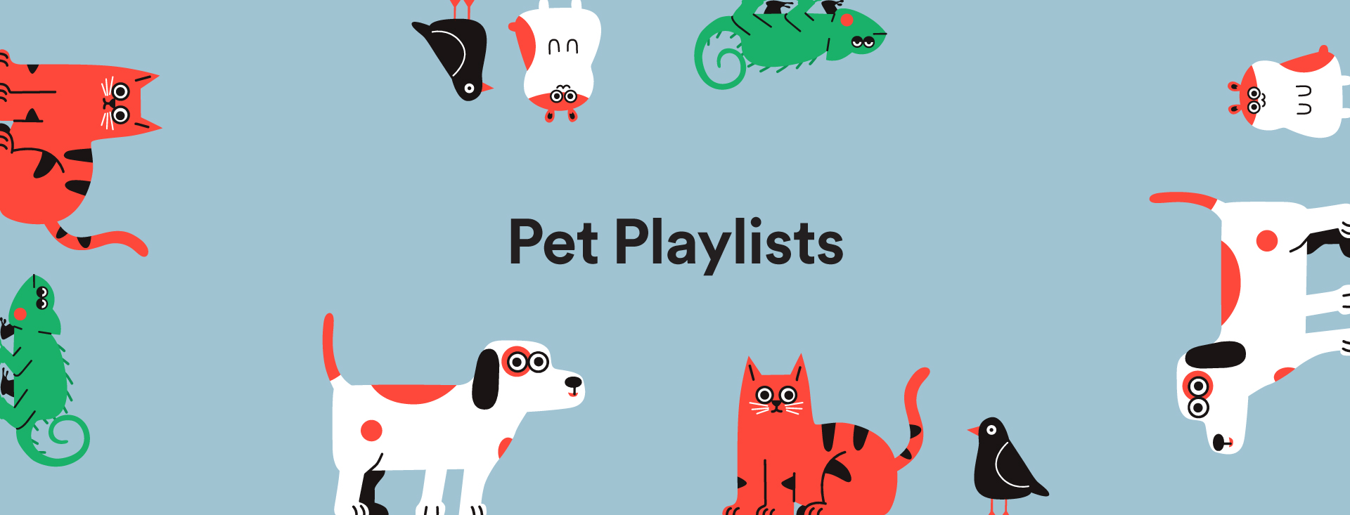 Image result for spotify pet