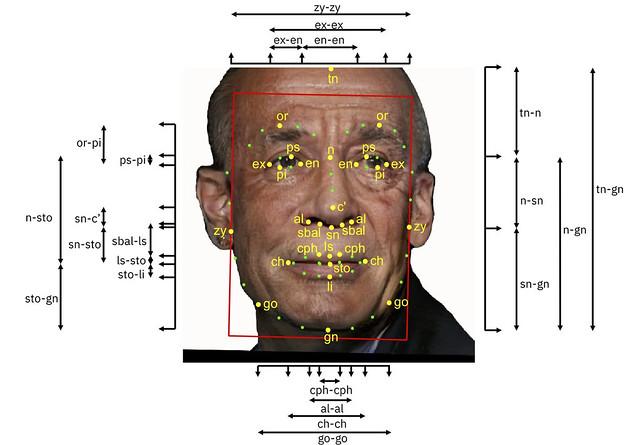 Cette photo montre le visage d'un homme sur lequel sont superposées des mesures de hauteur et de largeur (yeux, bouche, nez...).