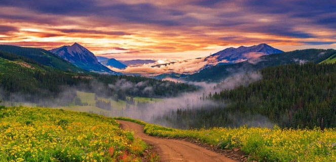 Crested Butte Colorado Wildflowers and Sunset