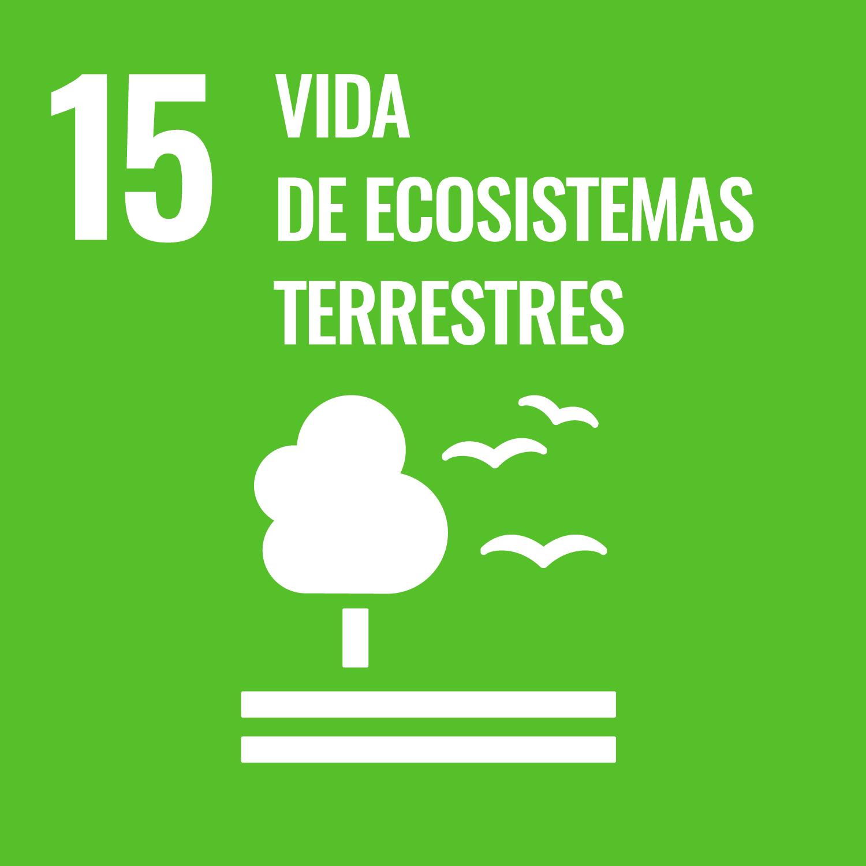 ODS 15 - Vida de ecosistemas terrestres