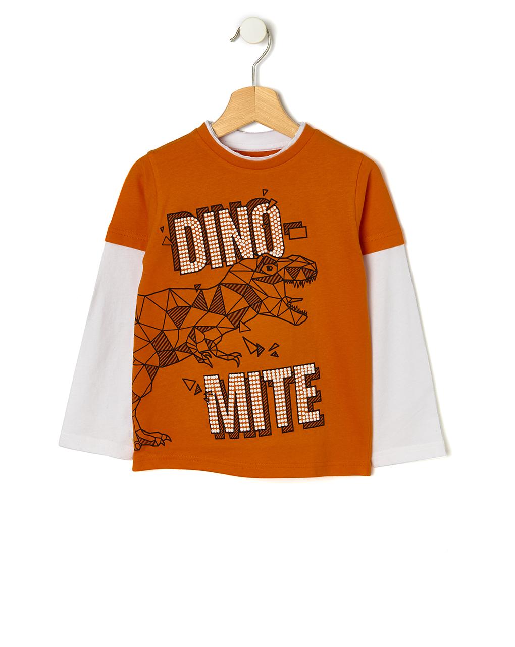 Μπλούζα Μακρυμάνικη Πορτοκαλί με Στάμπα για Αγόρι