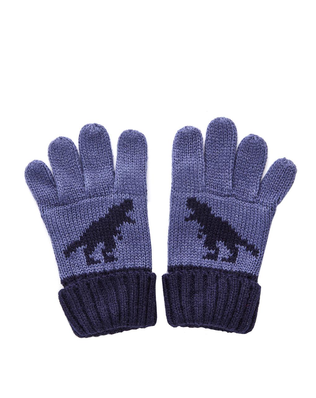 Γάντια Μπλε για Αγόρι