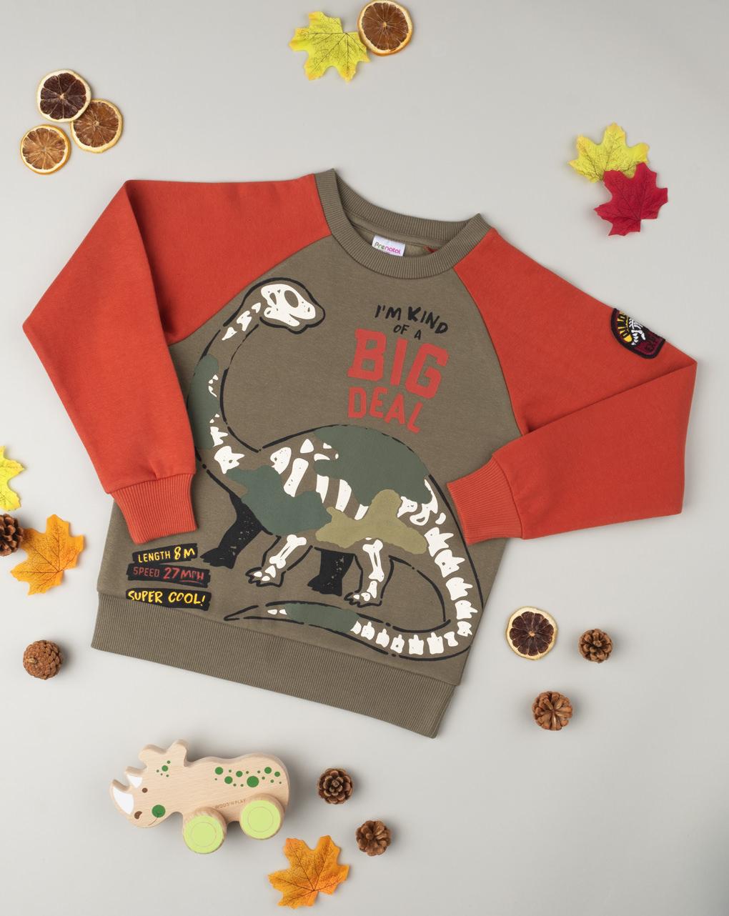 Μπλούζα Φούτερ Δίχρωμη με Δεινόσαυρο για Αγόρι