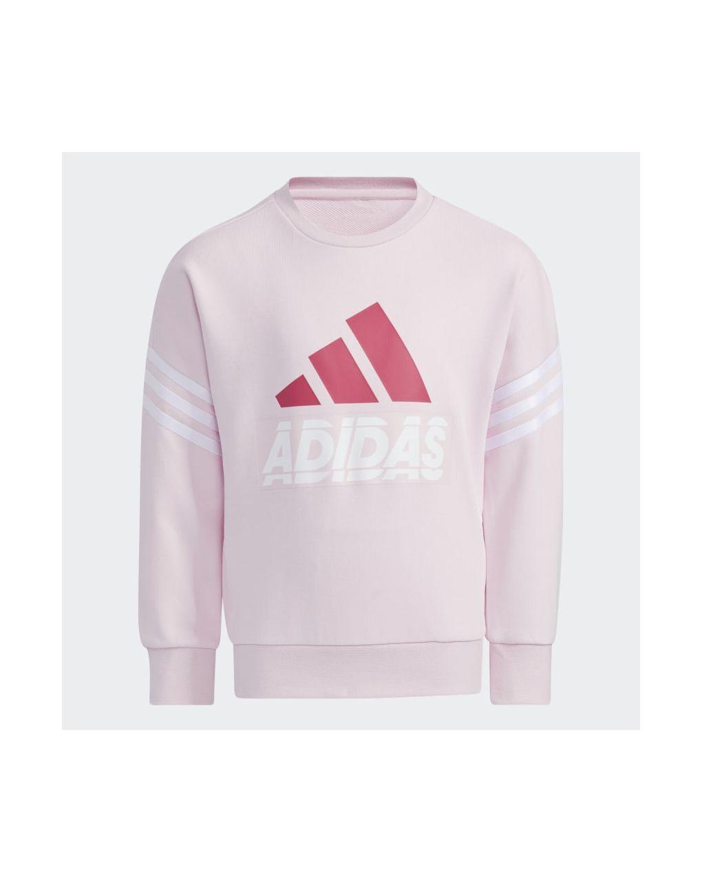 Adidas Μπλούζα Φούτερ Graphic Crewneck Aeroready Ροζ για Κορίτσι H40250