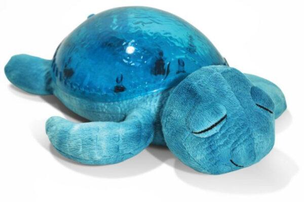 Tranquil turtle - Cloud B