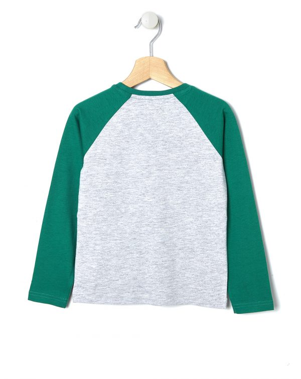 T-shirt grigia con maniche verdi - Prénatal