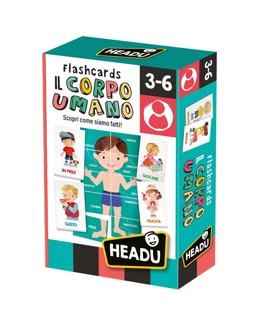 Headu - flashcards il corpo umano - Headu