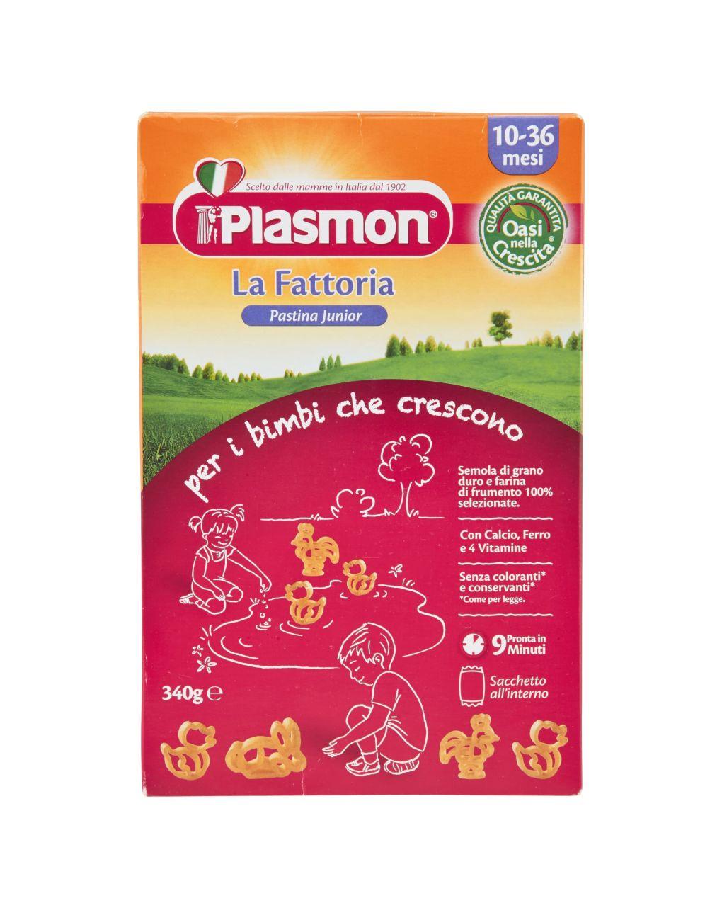 Plasmon - pastina junior la fattoria 340g - Plasmon