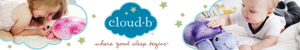banner promozionale Cloud B