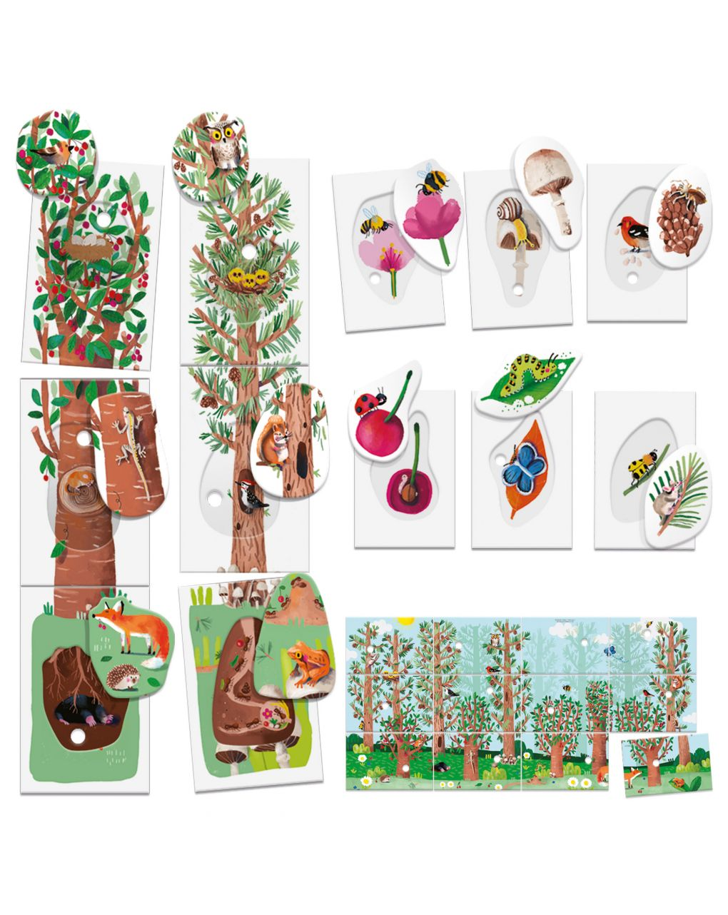 Headu - flashcards my first nature montessori - Headu