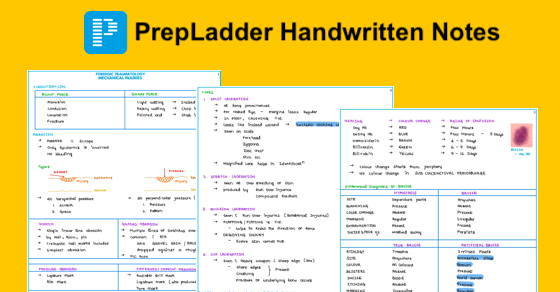 Maximize your productivity with PrepLadder notes