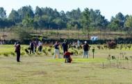 Juventude da Cruz Vermelha de Braga põe sábado no 'green' do Pitch& Putt de Palmeira o II Torneio de Golfe Solidário