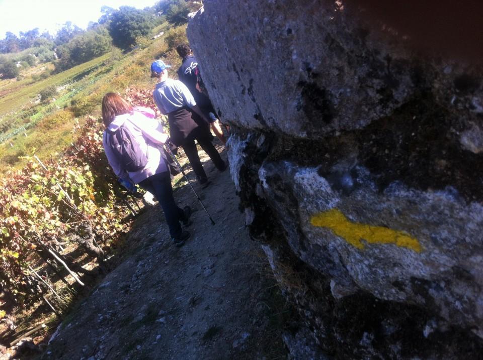 Berán quer garantir passagem do caminho Braga a Santiago de Compostela
