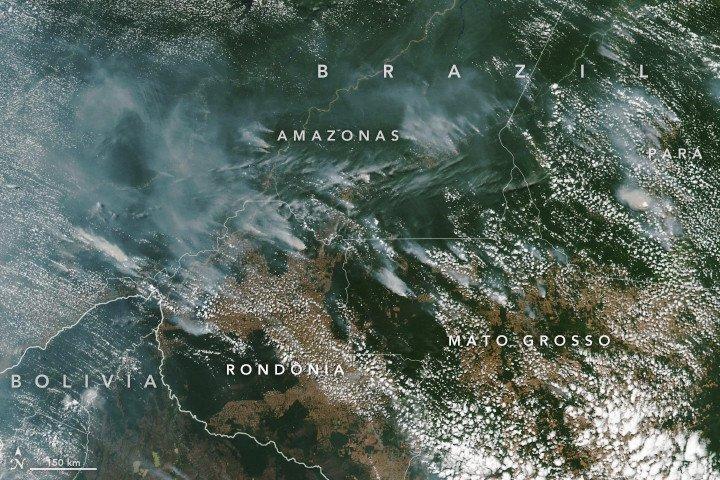Brasil: Amazónia está a arder