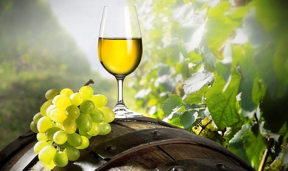 """Acordo UE-China protege Vinho Verde de """"imitações"""""""