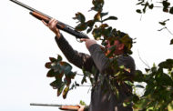 Operação Artémis. 87 detidos por caça ilegal