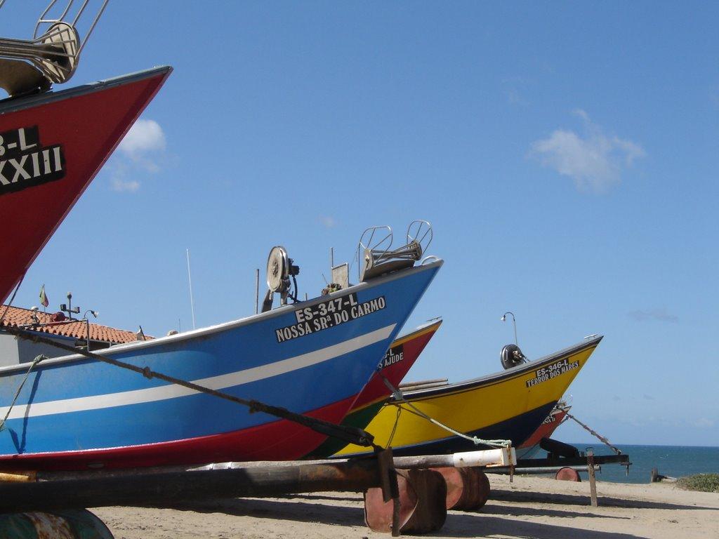 Governo aprova crédito até 20 milhões para sector da pesca e aquicultura, quando o preço do peixe cai a 'pique'