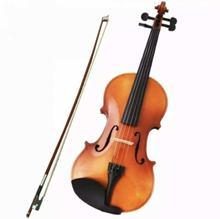 Brown Violin With Bag