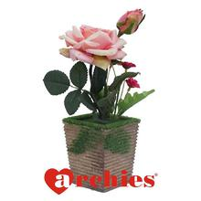 Lovely Pink Rose in a pot