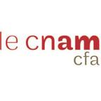 logo licence professionnelle métiers de la gestion et de la comptabilité parcours responsable de portefeuille clients en cabinet d'expertise (Cnam)