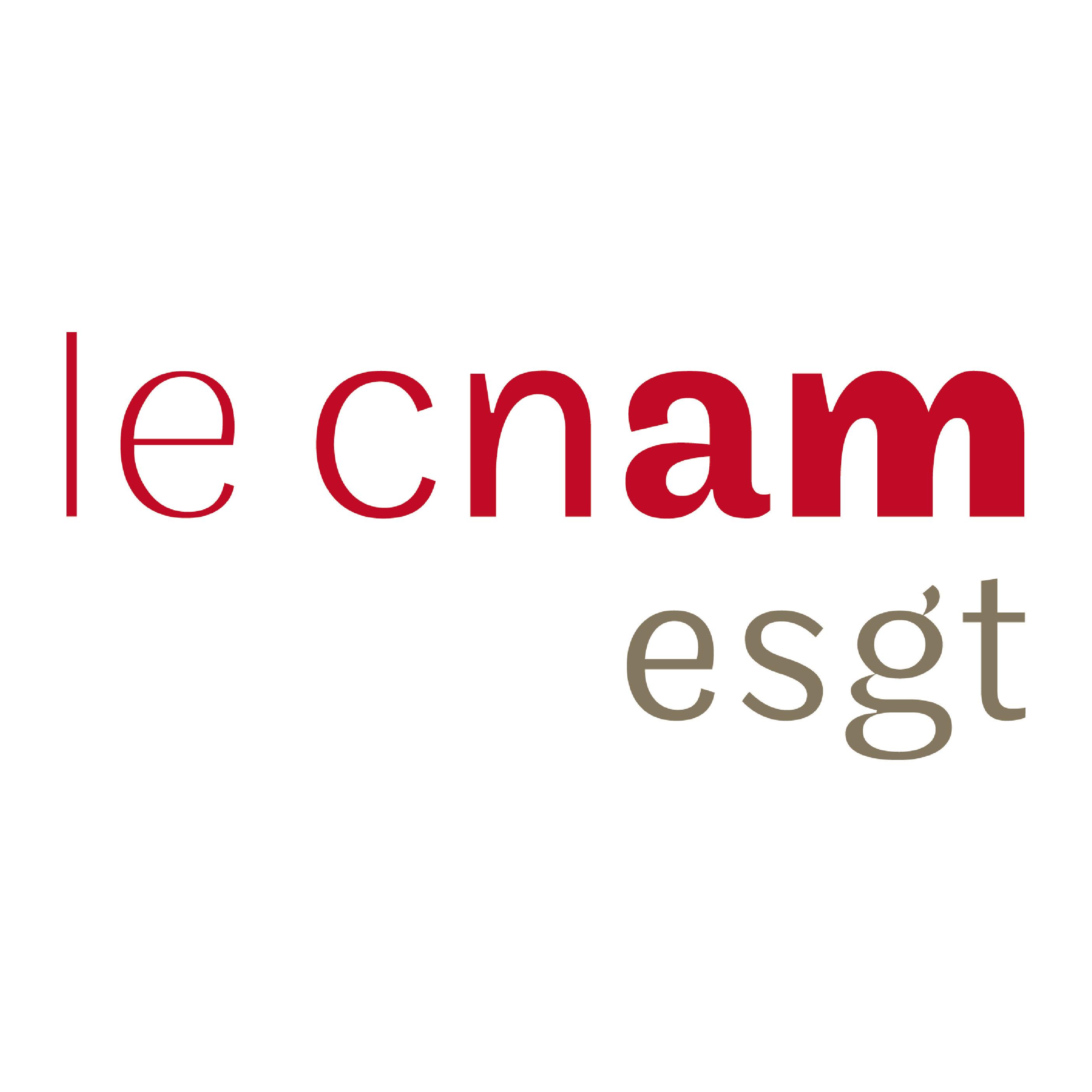 Logo Ecole Supérieure d'ingénieurs Géomètres et Topographes
