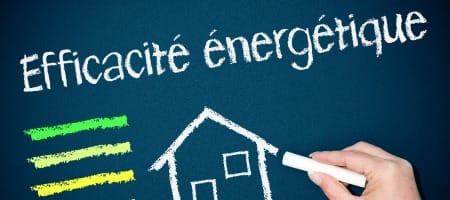 Moi, efficacité énergétique, premier poumon de ce monde à 300 milliards de dollars