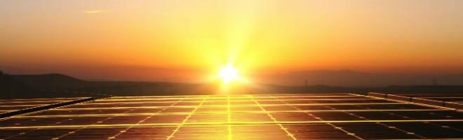 abeilles-energie-solaire-argent