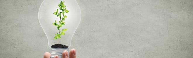certificats-economie-energie-ampoule