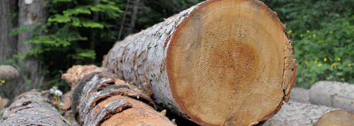 Le chauffage au bois, une alternative économique