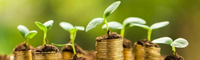 economie-verte-croissance-enjeu-une-min