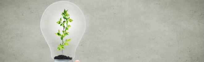economie-energie-ampoule 2