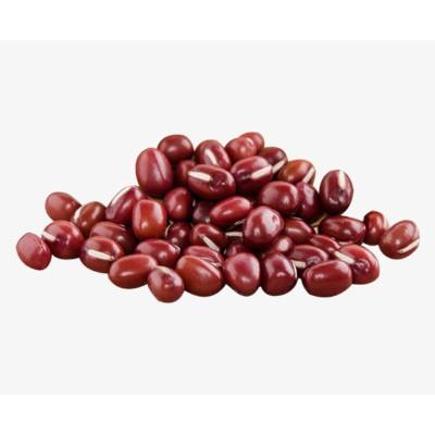 Feijão Vermelho  por kg Empório Gênova a granel KG