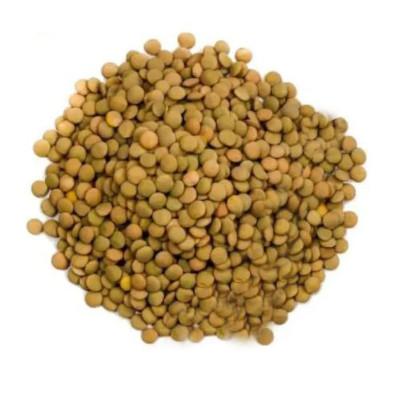Lentilha canadense a granel por kg Empório Gênova KG