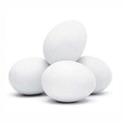 Ovo branco grande 05 bandejas com 12 ovos Dois Cunhados cinta UN