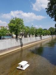 Casa para patos no rio Lis
