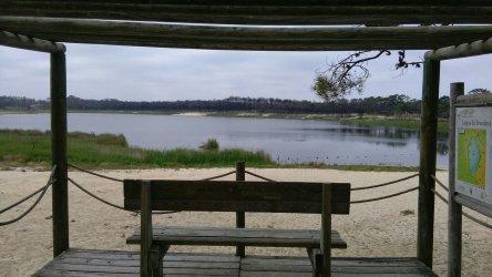 Nível de água na lagoa da Ervedeira convida a banhos