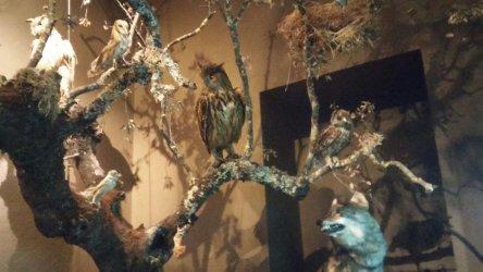 Em Penamacor pode conhecer as tradições locais no Museu Municipal