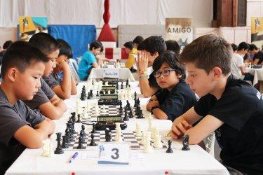 Corvos do Lis são campeões nacionais de xadrez