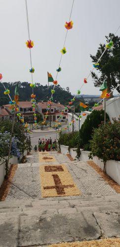 Tapetes feitos com serradura embelezam adro das festas