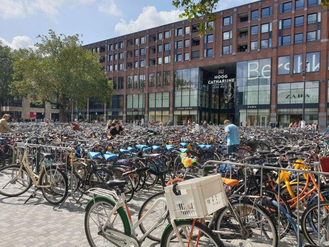 Todos de bicicleta