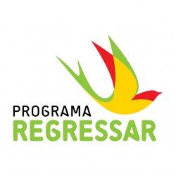 Apoio financeiro ao regresso dos portugueses que emigraram com 481 candidaturas