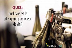 Quiz : quel pays est le plus grand producteur de vin?