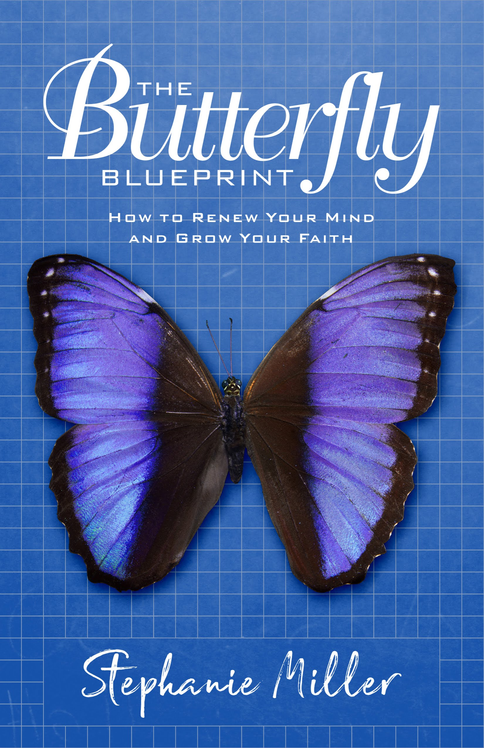 The Butterfly Blueprint cover