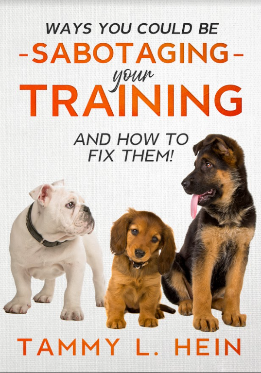 Ways You Could Be Sabotaging Your Training cover