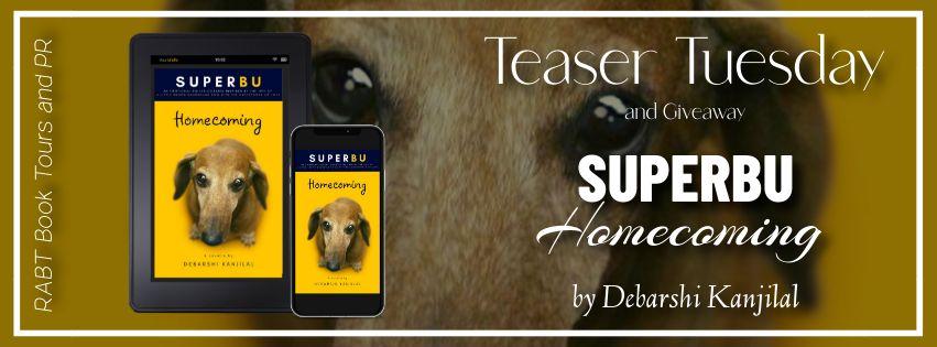 SUPERBU Homecoming banner