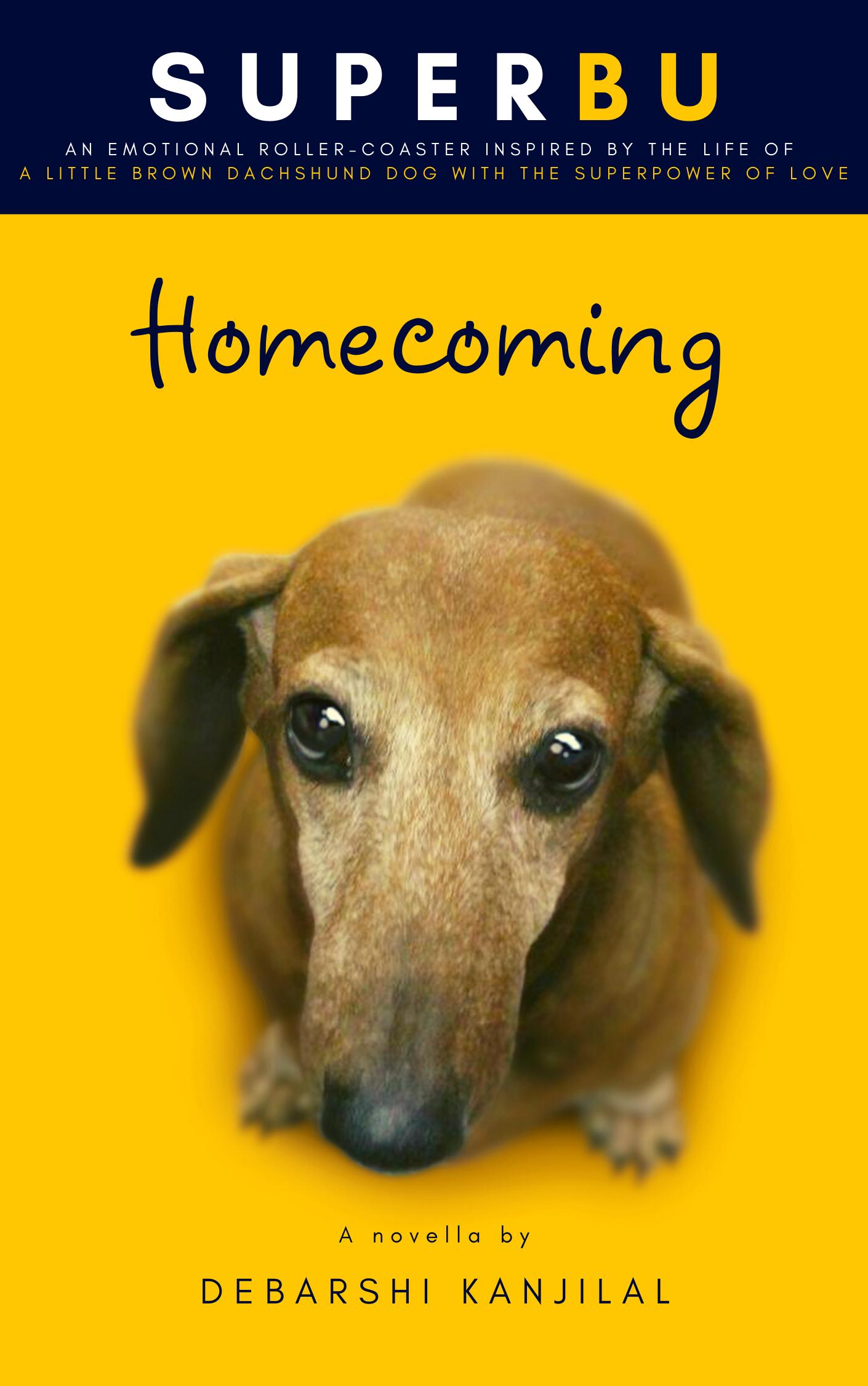 SUPERBU Homecoming cover