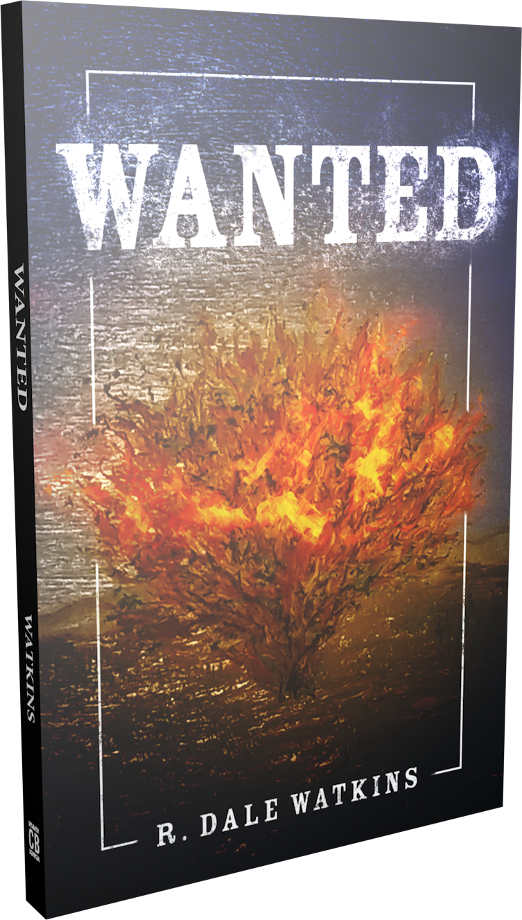 Wanted paperback