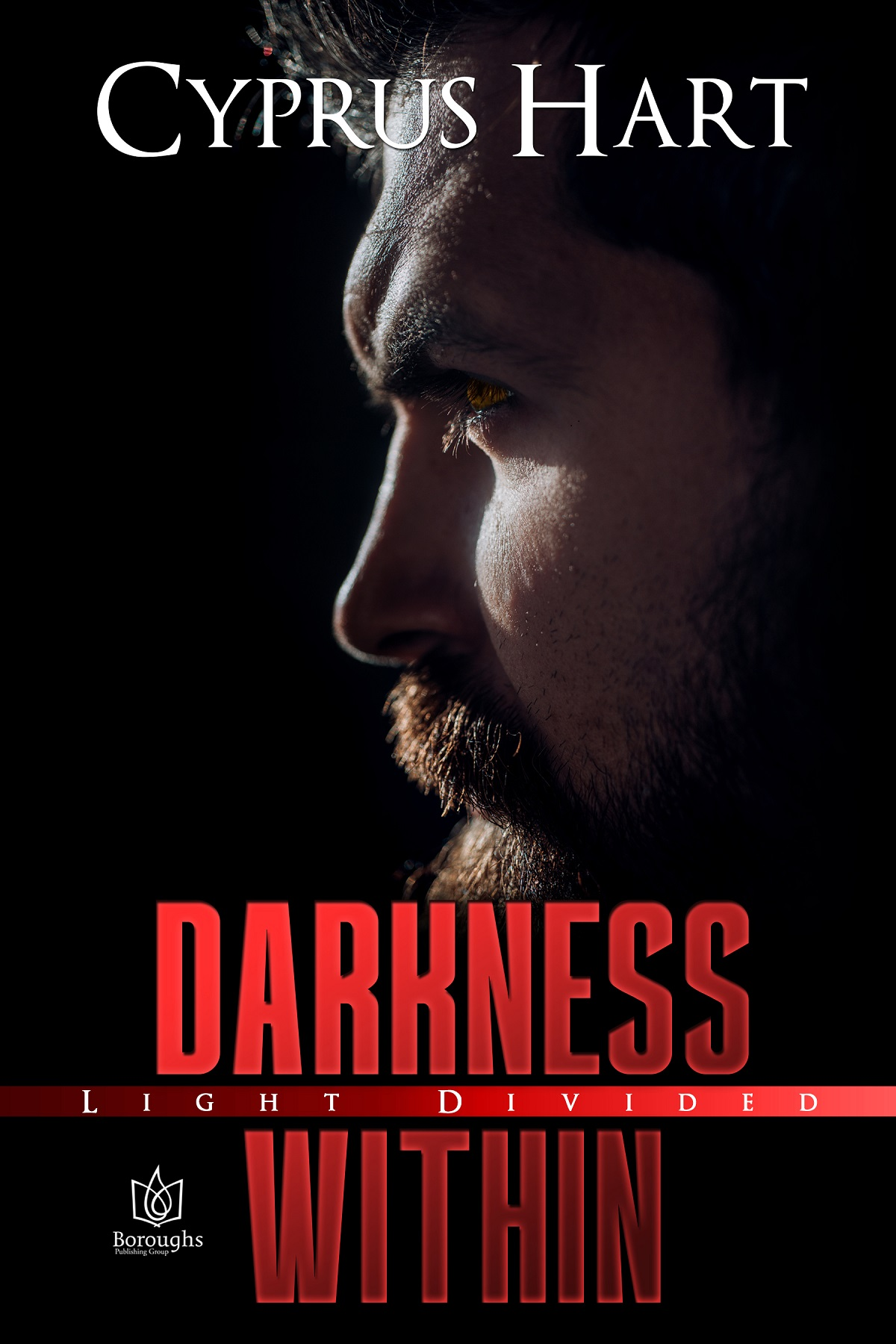 Darkness Within cover