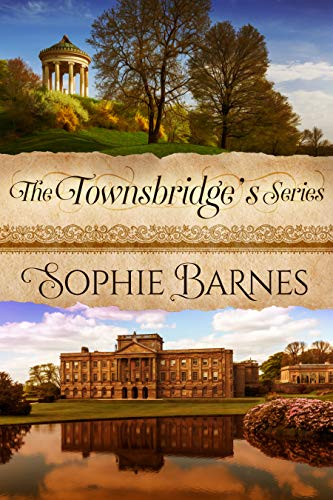The Townsbridge's Series cover